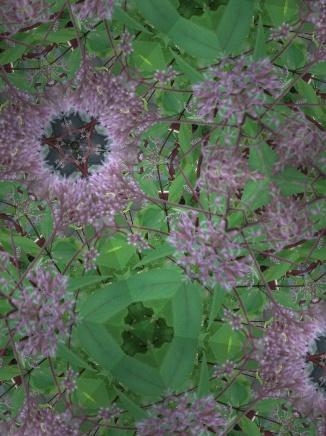 Kaleidoscope #1