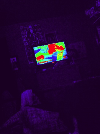 Thermal Image Friday