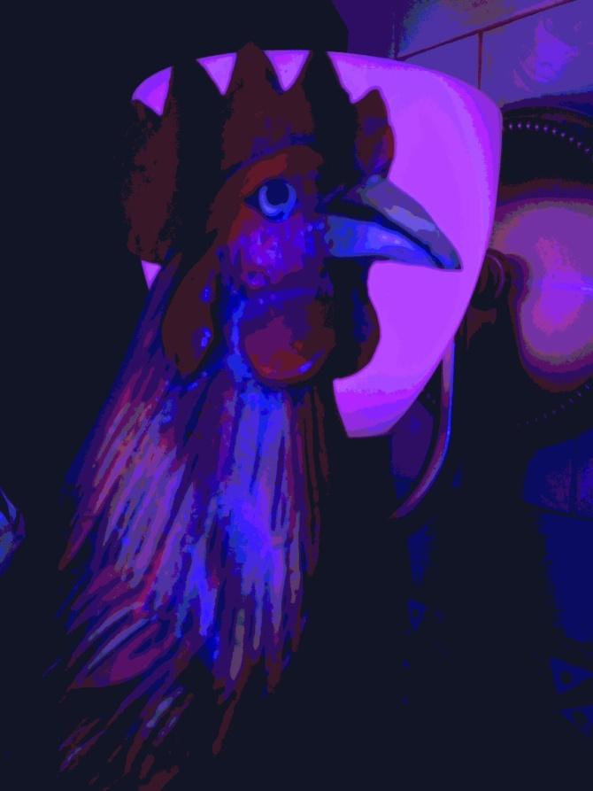 My Blue Chicken